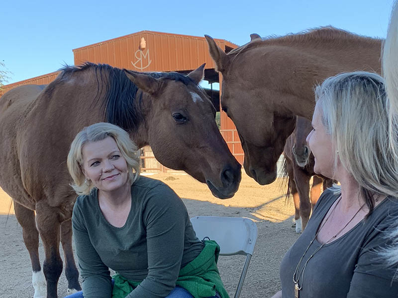 therapy session with horses